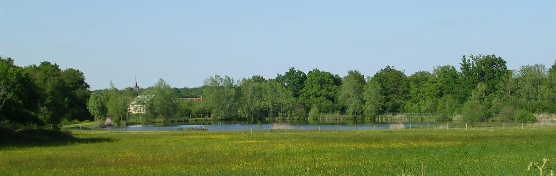 Nature verdoyante vers Migné